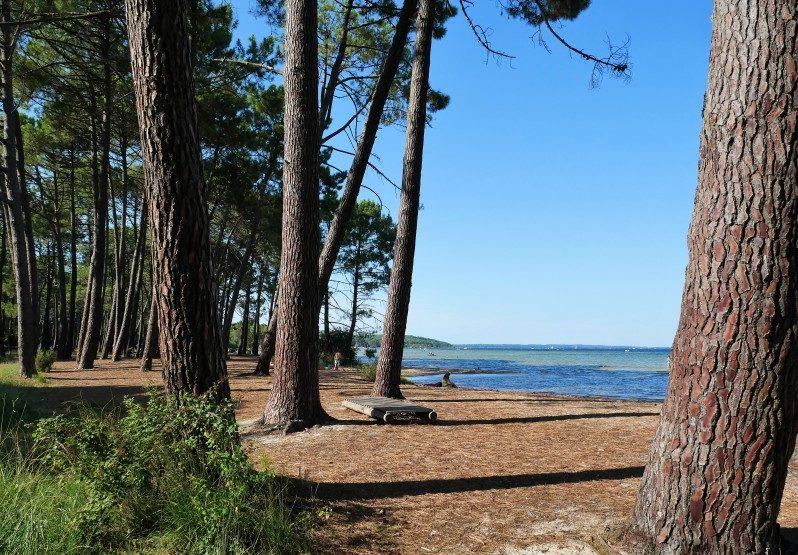 Strand Ispe am Lac Cazaux-Saguinet einer der schönsten Strände in Frankreich